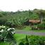 Poas Volcano, Doka Coffee Estate and Sarchi Arts and Craft