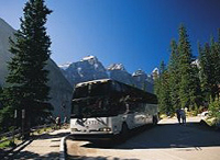 Columbia Icefield Tour from Calgary Photos