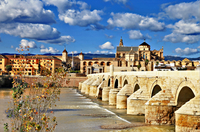 Cordoba Day Trip from Costa del Sol Photos