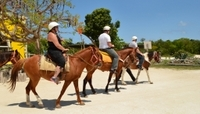 Cozumel Horseback Ride and Beach Getaway Photos