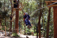 Currumbin Wildlife Sanctuary: Green Challenge Zipline Canopy Tour