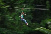 Daintree Rainforest Zipline and Wildlife Habitat Day Trip Photos