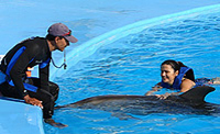 Dolphin Trainer for a Day in Cabo San Lucas Photos