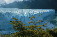 El Calafate City Tour Photos