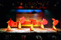 Flamenco and Opera Show with Dinner in La Siesta from Costa Brava
