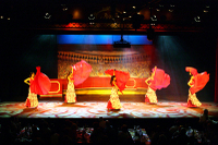 Flamenco Show with Optional Dinner and Transport from Costa Brava