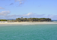 Fraser Island Day Trip from Hervey Bay Photos