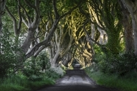 'Game of Thrones' and Giant's Causeway Tour from Belfast Photos