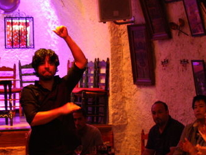Granada Flamenco Show in Sacromonte and Walking Tour of Albaicin Photos