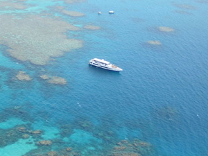 Great Barrier Reef Scenic Helicopter Tour and Cruise from Cairns Photos