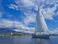Half-Day Sailing on the Derwent River from Hobart