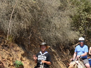 Los Angeles Horseback-Riding Tour to the Hollywood Sign Photos