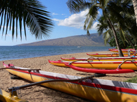 Hawaiian Outrigger Canoe and Snorkel Adventure Photos