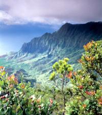 Hidden Valley Falls Kayak and Kauai Hike Adventure Photos