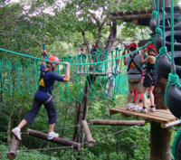 High Ropes and Hanging Bridges Tour at Adventure Park Costa Rica Photos