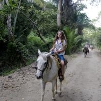Horseback-Riding Tour from Paraty Photos