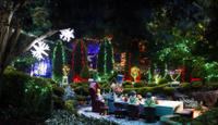 Hunter Valley Gardens Christmas Lights Spectacular from Sydney