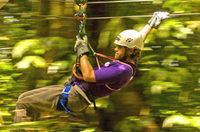 Jamaica Sky Explorer and Optional Zipline Tour from Montego Bay Photos