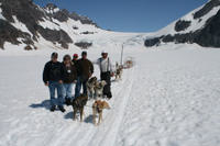 Juneau Helicopter Tour and Dogsledding Experience Photos