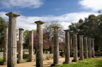 Katakolon Shore Excursion: Private Tour of Ancient Olympia and Archeological Site Photos