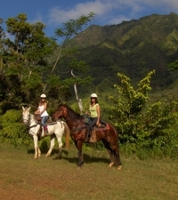 Kauai Horseback-Riding Adventure for Beginners Photos