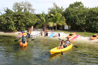 Kayak and Paddleboard Rental in Coconut Grove Photos