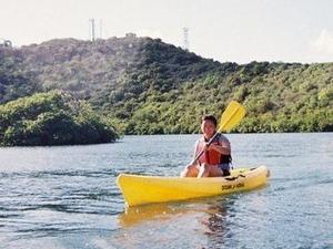 St Thomas Mangrove Lagoon Kayak and Snorkel Tour Photos