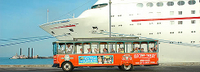 Key West Shore Excursion: Key West Hop-On Hop-Off Trolley Tour Photos