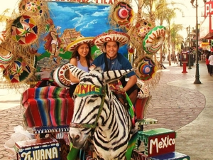 Tijuana City and Shopping Trip from San Diego