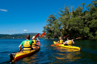 Lake Rotoiti Hot Pools and Glowworm Cave Kayak Tour from Rotorua Photos