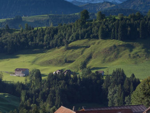 Switzerland Countryside and Traditions Tour from Zurich Photos