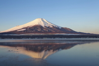 Mt Fuji, Lake Ashi and First-Class Bullet Train Day Trip from Tokyo Photos