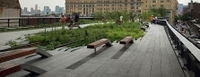 New York High Line Park Walking Tour Photos
