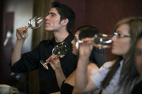 Niagara-on-the-Lake Wine-Tasting Tour with Gourmet Lunch or Dinner Photos