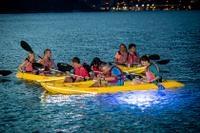Night Kayak Tour in St Thomas Photos