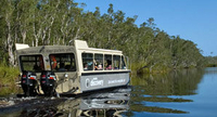 Noosa River and Everglades Afternoon Tea Cruise Photos