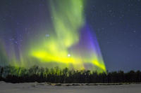 Northern Lights and Chena Hot Springs Tour from Fairbanks Photos