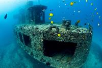 Oahu Atlantis Submarine Adventure and Sunset Dinner Cruise Photos