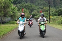 Oahu Shore Excursion: Independent Scooter Adventure Photos