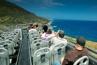 Oahu South Shore Double-Decker Bus Tour with Sea Life Park Admission