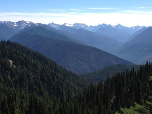 Small-Group Olympic National Park Tour from Seattle Photos