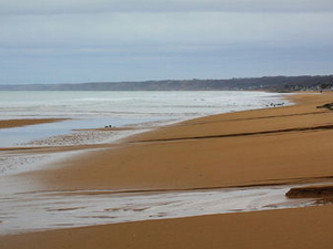Normandy Beaches Half-Day Trip from Bayeux Photos