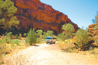 Palm Valley 4WD Tour from Alice Springs Photos