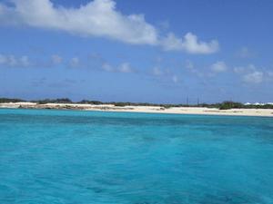 Caribbean Snorkel Tour in Grand Turk's Coral Reef Photos