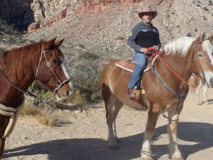 Old Spanish Trail Horseback Ride with Lunch Photos