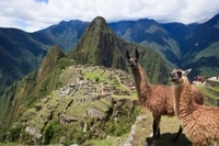 Private 2-Day Tour of Cusco and Machu Picchu Photos