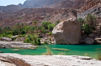 Private 4x4 Wadi Safari - An Encounter with Nature Photos