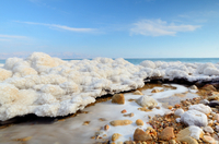 Private Half Day Tour to The Dead Sea Photos