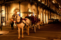 Private Haunted Carriage Tour in New Orleans Photos