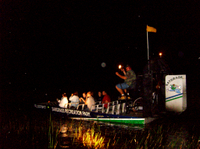 Private Night Tour: Florida Everglades Airboat Ride from Fort Lauderdale Photos